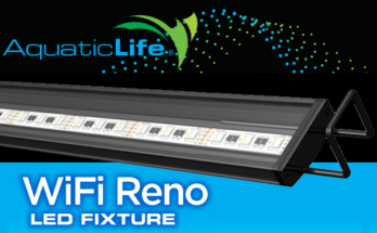 Reno WiFi LED